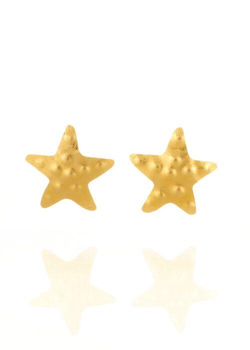 Daniela-Alvarez-Boutique-Accesorios-Topos-estrella-de-mar-3-4-16